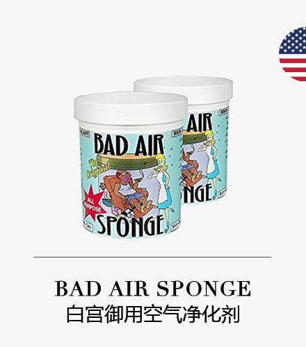 bad air sponge 白宫空气净化剂