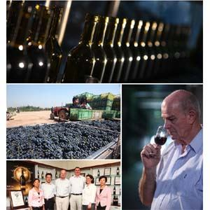 贺兰山葡萄酒750ml