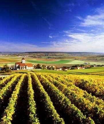 Ch. Sainte Marie玛丽庄园红葡萄酒750ml