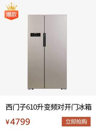 SIEMENS 西门子 BCD-610W(KA92NV03TI)冰箱 610升变频 对开门冰箱 无霜独立双循环