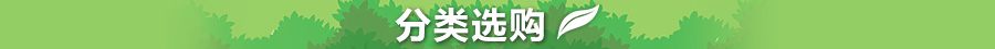 园艺分类 -亚马逊