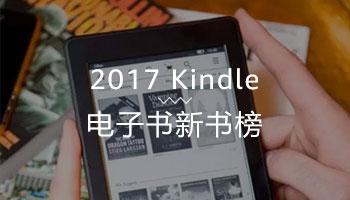 电子书新书榜