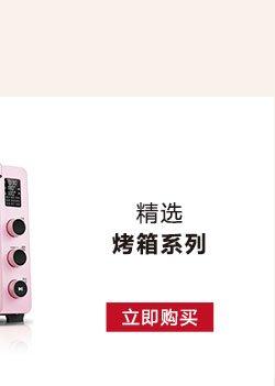 2017年厨具小家电Xmas促销烤箱