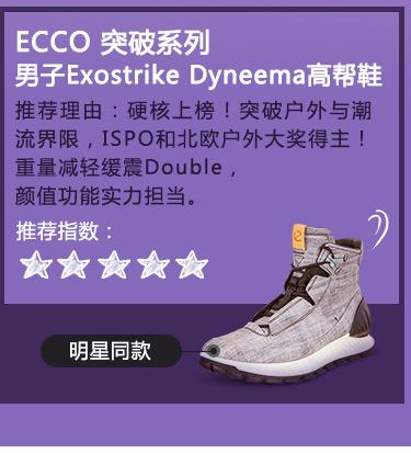 ECCO 男子鞋