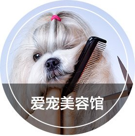 Pets Grooming Center