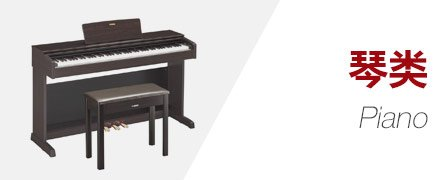 电钢琴电子琴