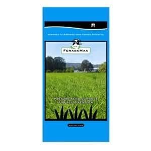 Dlf International Seeds FORUN112 Dry Pasture Seed, 50-Lbs.