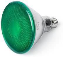 Faro Barcelona PAR38 LED 17399 - LED 灯泡,10 W,金属,聚碳酸酯和玻璃(绿色)