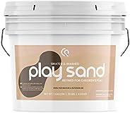天然玩沙 | 精致、洗涤和磨碎,品质上乘,耐用,可重复密封桶,室内和室外均可*使用,多用途,天然来源,满意* 1 加仑