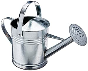 GCD-Austram Galvanized Watering Can, 1-Gallon