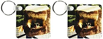 3dRose Sugar Glider 浮雕在马赛克的悬挂式床上 - 钥匙扣,6.35 x 11.43 厘米,两件套 (kc_107051_1)