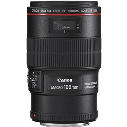 佳能(Canon) EF 100mm f/2.8L IS USM 全画幅微距镜头