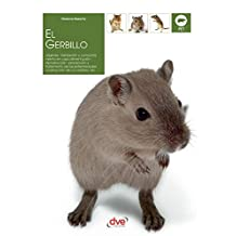 El gerbillo (Spanish Edition)