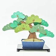 Kami-bonsai 纸工艺品和日本传统艺术套件垫/沙库拉/Momiji/Kinzu 带明信片 Matsu 13561001
