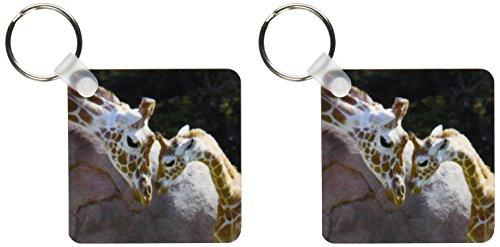 3dRose 母婴长颈鹿,旧金山动物园 - US48 TAU0001 - Tananarive Aubert - 钥匙链,5.72 x 11.43 厘米,两件套 (kc_96857_1)