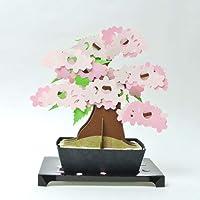 Kami-bonsai 纸工艺品和日本传统艺术套件垫/沙库拉/Momiji/Kinzu 带明信片 Sakura 13561002