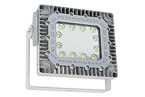 150 瓦海洋和户外 LED 泛光灯 - 表面安装式蹦极管 - 13,000 流明 - IP67 防水(-11-25V AC/DC-60°-5600K)