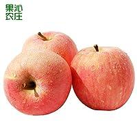 陕西渭南长寿塬红富士19°苹果5斤装