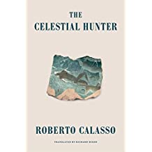 The Celestial Hunter (English Edition)
