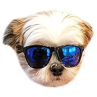 G014 宠物狗 80 年代太阳镜 小型犬 高达 15 磅 服装道具照片