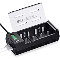 EBL C D 电池充电器放电器,带 LCD 显示屏和 2 个 USB 端口用于手机 - 超适配 AA AAA C D 9V NiMH 充电电池