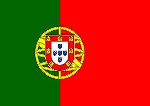 葡萄牙托兰家庭花园旗帜 71.12 x 101.60 cm 装饰乡村民族房旗