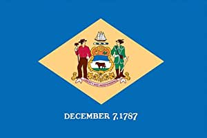 Valley Forge Flag Made in America 3' x 5' Nylon Delaware State Flag