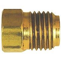 4LIFETIMELINES 黄铜制动油管插头,3/16 (3/8-24 I),10/包