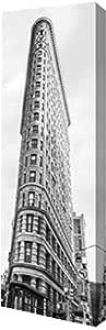 PrintArt GW-POD-49-4AP3201-7x20 天文建筑,纽约,由 Anonymous Gallery 装裱艺术微喷油画,17.78 cm x 50.8 cm