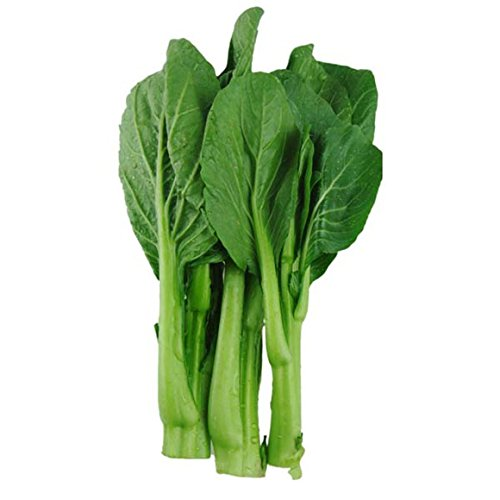 民生源 四季菜心种子 蔬菜种子 青柳叶菜苔 白菜苔 耐热耐湿生长快 10图片