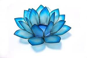 Lotus 茶灯 冷水