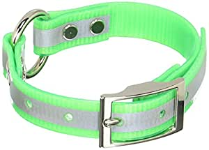 """OmniPet Sunglo Reflective Ring in Center Dog Collar, 3/4 x 18"""", Green"""