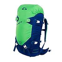 bigpack专业滑雪包 徒步户外登山双肩包男女通用 防水耐磨45L (绿色)