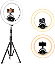 UBeesize 16 英寸(约 40.6 厘米)环形灯,带支架,3000-6000K LED 环形灯,用于视频拍摄、摄影、化妆。专业灯适用于相机、网络摄像头和手机。兼容 iPhone & Android&