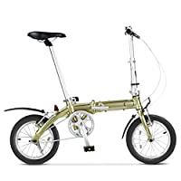 DAHON大行 经典热卖14寸单速铝合金折叠自行车 BYA412