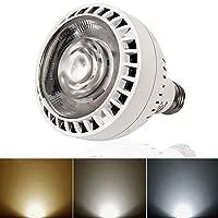 Yoursme 110V 60W 游泳池 LED 灯泡 变色 白色 适用于大多数 Pentair Hayward 灯具