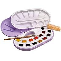 Lefranc & Bourgeois Fine精致水彩颜料,水彩套装  21 种颜色,1/2填充在颜料盒里,1支刷子,海绵和混合调色板