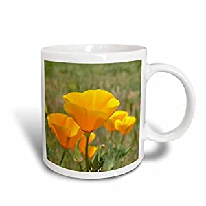 3drose patricia sanders Flowers 字样–加利福尼亚橙色罂粟花田花花朵照片–马克杯 白色 15-oz