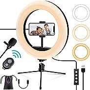 iMartine 10 英寸自拍 LED 环形灯带三脚架,手机支架,麦克风,用于调光桌面化妆铃形灯,适用于 YouTube 视频录制,TikTok 直播 3 种灯光模式和 10 种亮度等级