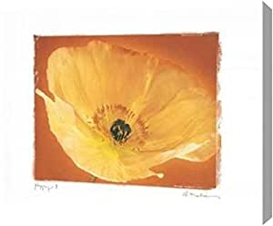 "PrintArt Poppy I,76.2 x 60.96 厘米 30"" x 24"" GW-POD-11-MEL-289-30x24"