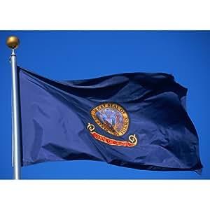 Allied Flag 户外尼龙州旗,Idaho,91.44 cm x 1.52 m