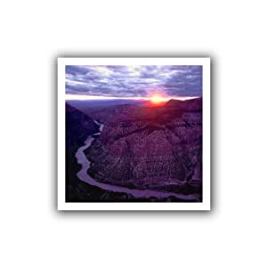 ArtWall Dean Uhlinger 'Green River Dinosaur' Unwrapped Flat Canvas Artwork, 22 by 22-Inch