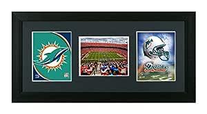 NFL. Miami Dolphins Framed NFL Miami Dolphins 3 In 1 Showcase, Field, Helmet & Logo