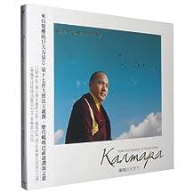 风潮 TCD-9236 大宝法王 最新专辑 天空下 1CD