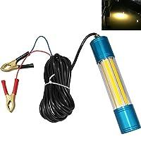 Lightingsky 12V 60W 6500 流明 LED 潜水钓鱼灯,深水下鱼探路灯,带 5.47 码线,适用于船舶钓鱼