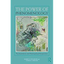 The Power of Phenomenology: Psychoanalytic and Philosophical Perspectives (English Edition)