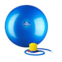 Black Mountain Products 专业级稳定球 1000 磅防爆剂 2000 磅 静电加重
