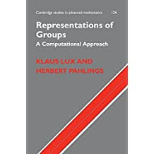 Representations of Groups: A Computational Approach (Cambridge Studies in Advanced Mathematics Book 124) (English Edition)