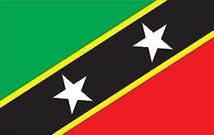 Allied Flag 室外尼龙 St Kitts and Nevis 联合国旗帜 3 到 5 英尺 60-100-70344