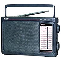 Tecsun 德生 MS-200 中波/短波高灵敏度收音机(老人专用) (灰色)